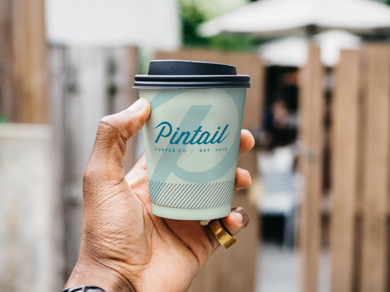 Pintail Coffee Co.